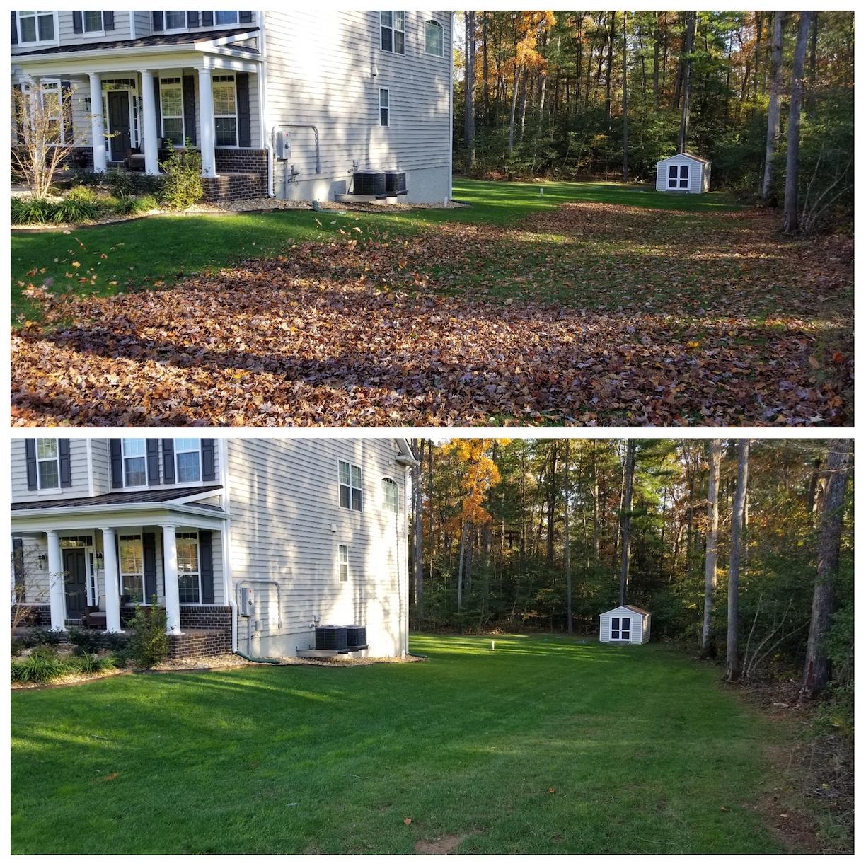 Leaf Removal, Leaf Cleanup, Leaf Pickup, Leaf Vacuum