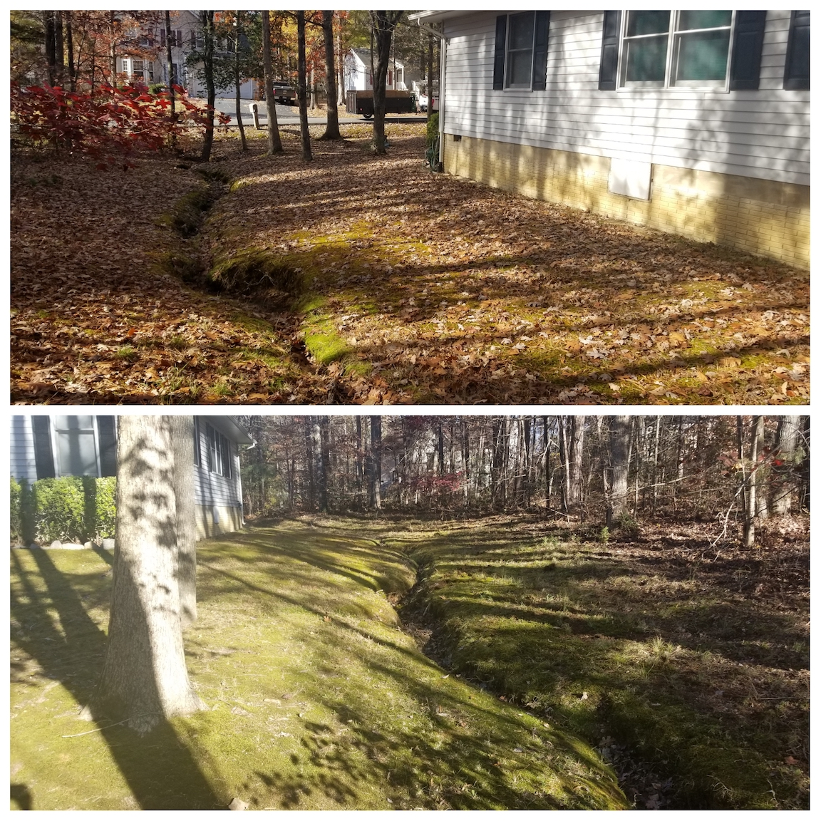 Leaf Cleanup, Leaf Pickup, Leaf Vacuuming, Haul Leaves, Fall Cleanup, Winter Cleanup