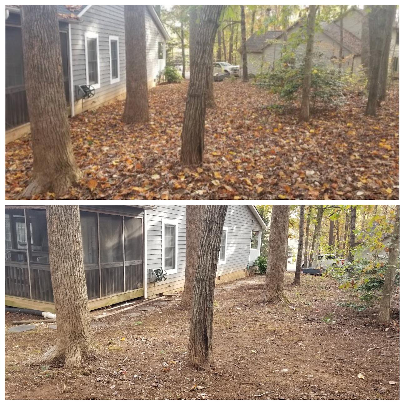 Leaf Cleanup, Fall Cleanup, Leaf Pickup, Leaf Vacuum, Haul Leaves